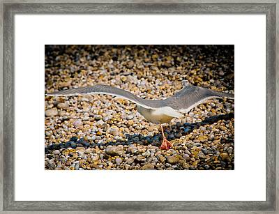 The Takeoff Framed Print