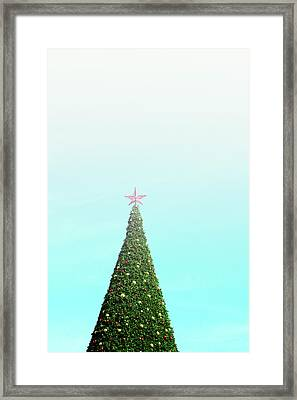 The Tallest Christmas Tee- Photograph By Linda Woods Framed Print