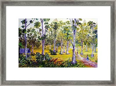 The Teak Garden Framed Print
