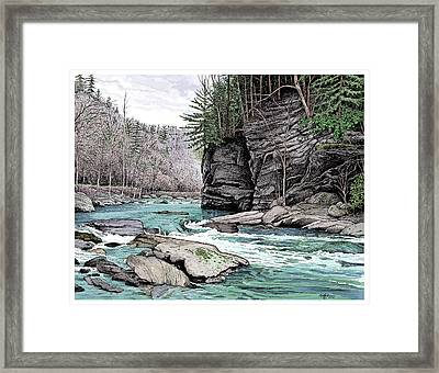 The Tellico River Framed Print by Dave Olson