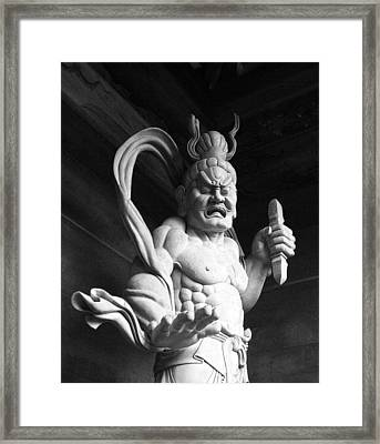 Framed Print featuring the photograph The Temple Guardian by Tim Ernst