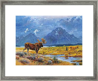 The Teton Trio Framed Print