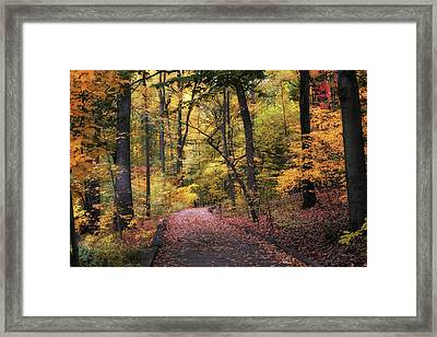 Framed Print featuring the photograph The Thain Forest by Jessica Jenney