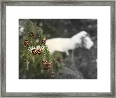 The Thaw Framed Print by Robert Babler