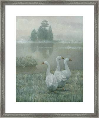 The Three Geese Framed Print