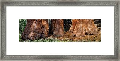 Framed Print featuring the photograph The Three Graces by Francesco Emanuele Carucci