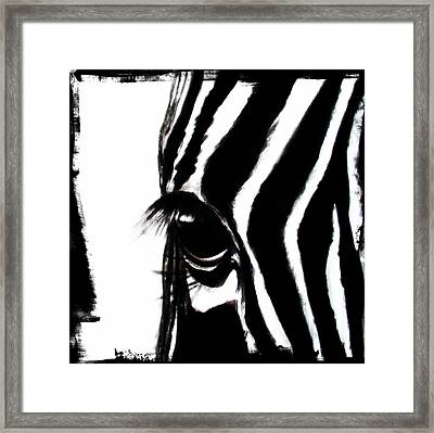 The Three Musketeers - Zebra Framed Print