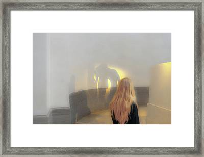 The Three Shades Framed Print by Daniel Furon