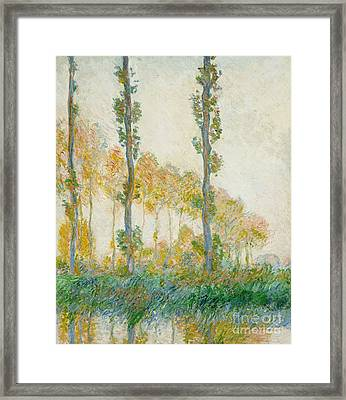 The Three Trees Framed Print by Claude Monet