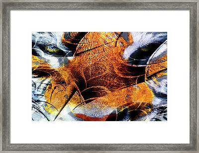 The Tiger And The Samurai Framed Print