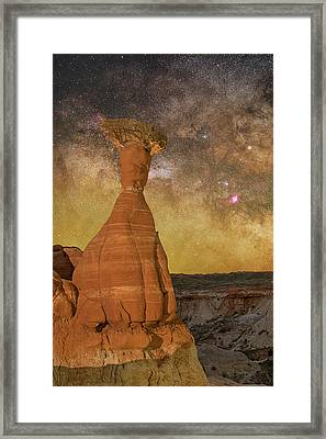 The Toadstool And The Core Framed Print