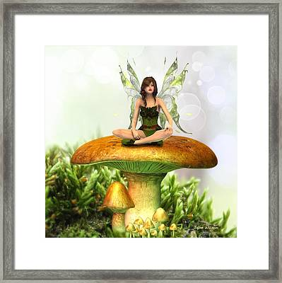 The Toadstool Fairy Framed Print