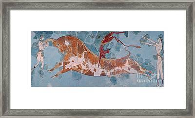 The Toreador Fresco, Knossos Palace, Crete Framed Print