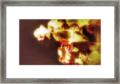 Framed Print featuring the photograph The Touch by Isabella F Abbie Shores FRSA