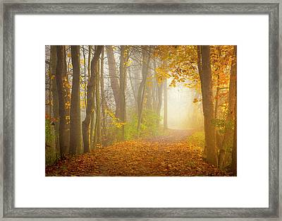 The Towpath Trail Framed Print