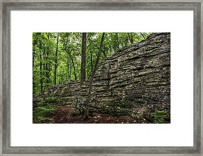 The Trail Framed Print