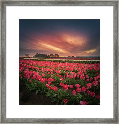 Framed Print featuring the photograph The Tranquil Morning Before Sunrise by William Lee