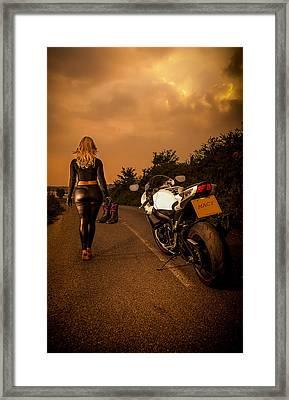The Traveler Framed Print by Paul Neville