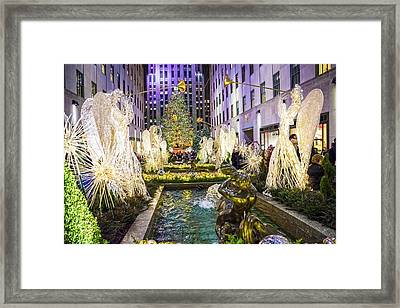 The Tree And Fountain Framed Print