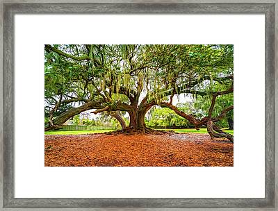 The Tree Of Life - Paint Framed Print by Steve Harrington