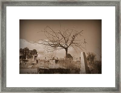 The Tree On Boot Hill  Framed Print