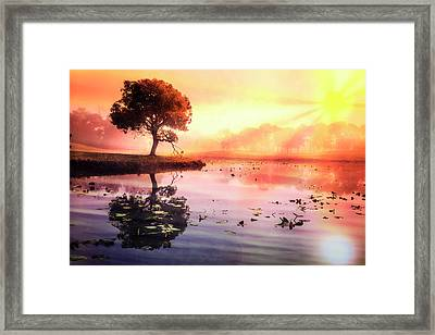 The Tree On The Point Framed Print