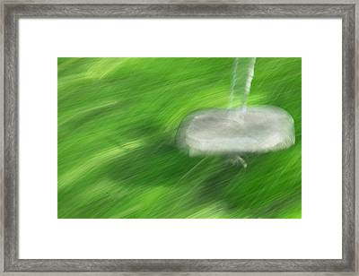 The Tree Swing Framed Print by Mary Lee Dereske