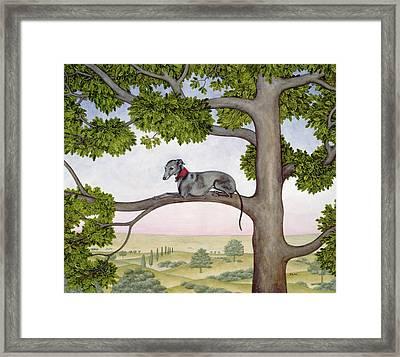 The Tree Whippet Framed Print