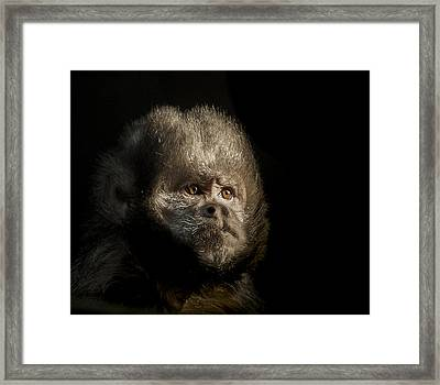 The Trial Framed Print by Paul Neville