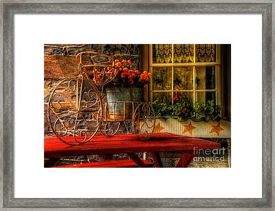 The Tricycle Framed Print by Lois Bryan