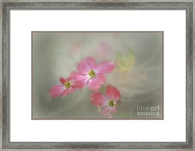 Framed Print featuring the photograph The Trinity by Brenda Bostic