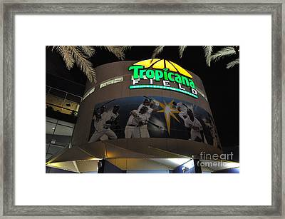 The Trop Framed Print