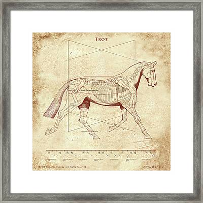 The Trot - The Horse's Trot Revealed Framed Print