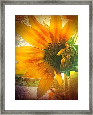 The Truth-teller Framed Print by Tara Turner