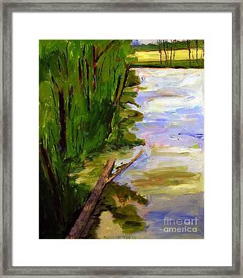 The Turtle Log Framed Print by Charlie Spear