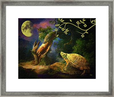 The Turtle Of The Moon Framed Print