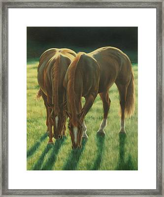 The Twins Framed Print by Karen Coombes