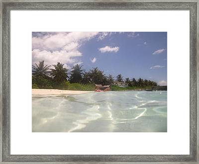 The Ultimate Holiday Framed Print by Andrei Fried