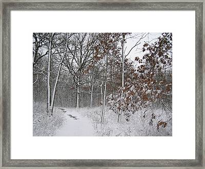 The Unbeaten Path Framed Print