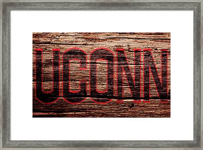 The University Of Connecticut Framed Print