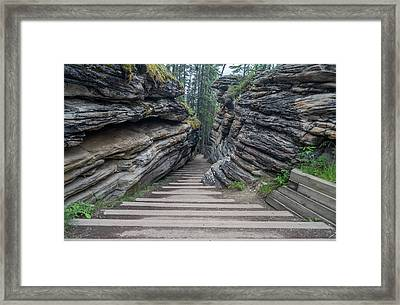 The Unknown Path Framed Print