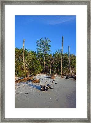 The Unspoiled Beauty Of Barefoot Beach In Naples - Portrait Framed Print