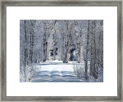 The Untraveled Winter Road Framed Print