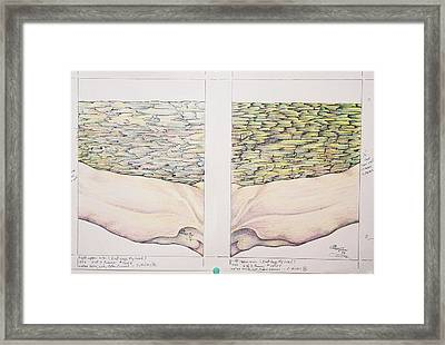 The Upper Left And Right Arms Of Christ Framed Print
