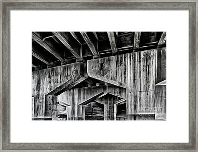 Framed Print featuring the photograph The Urban Jungle by Brad Allen Fine Art