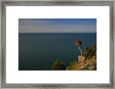 The Valley Of The Rocks Framed Print by Nichola Denny