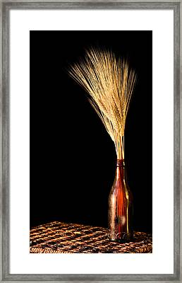 The Vase Framed Print by JC Findley