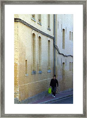 The Very Green Bag Framed Print by Jez C Self