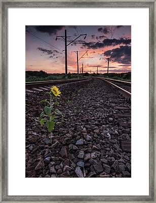 The Vicissitudes Of Life Framed Print by Natalya Antropova