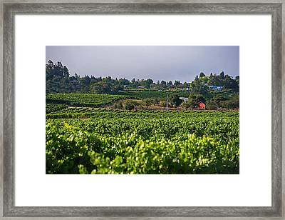 The View From Elphick Street Sebastopol Ca Framed Print by Toby McGuire